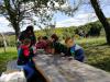 Pobiranje jabolk v Kozjanskem parku